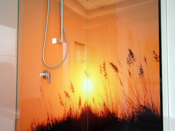 Printed Glass Shower